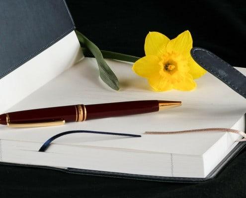 Schöne Tagebücher