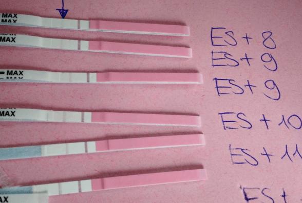 Empfehlungen F 252 R Schwangerschaftstests Und Hcg Tabelle