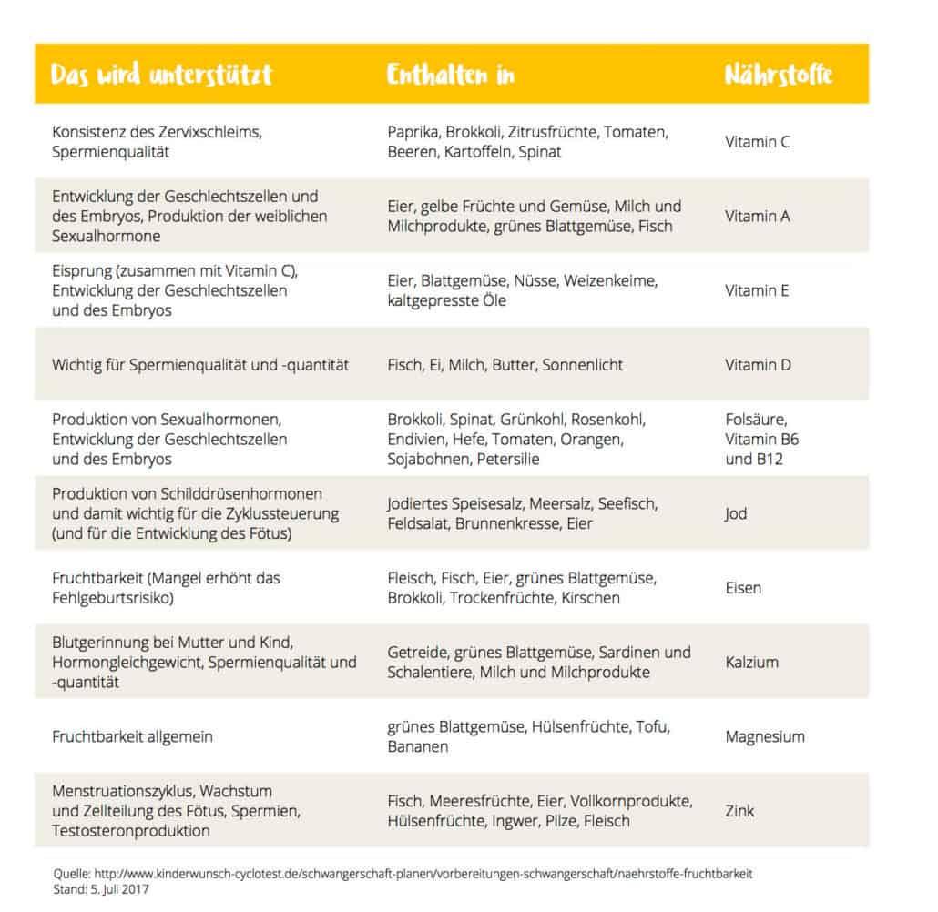 Kinderwunsch Ratgeber Fruchtbarkeit Frau: Mein Download-Tipp: Kostenloser Kinderwunsch-Ratgeber